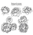 sketch - card with flowers vector image vector image