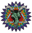 Skull of a bull on a colorful paint texture