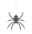 spider flat icon halloween and scary danger vector image