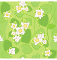 white lotus background vector image vector image