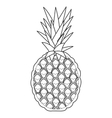 whole pinapple icon vector image