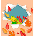 autumnal background ready for design vector image vector image