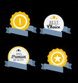 badge labels and ribbons emblems set vector image