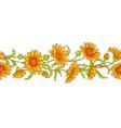 calendula flower pattern vector image