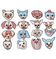 character design cute dog set vector image