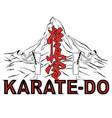 karate 0001 vector image vector image