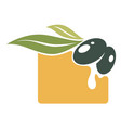 olive oil banner berry with leaves and juice vector image