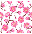 seamless pattern with sakura or cherry blossom vector image vector image