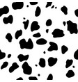 black and white pattern dalmatians vector image