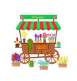 cartoon flower stand vector image vector image