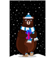 cute cartoon bear in knitted hat with gift on vector image vector image