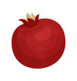 flat icon of whole pomegranate delicious vector image vector image