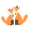 foxes couple isolated element vector image
