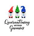 quarantining with my gnomies funny quarantine vector image vector image