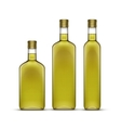 Set of Olive or Sunflower Oil Glass Bottles vector image vector image