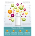 Vitamins and supplements infographics vector image vector image