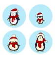 penguins Christmas card vector image