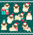 christmas set with cute pugs vector image vector image