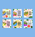 collection salad special offers flat vector image