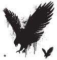 stencil hawk vector image vector image