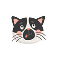 surprised curious cat head isolated kitten face vector image vector image