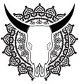 wild animal skull in black and white on mandala vector image