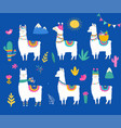 llama collection cute hand drawn vector image vector image