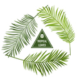 Set of Tropical Palm Leaves vector image