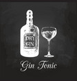 hand sketched gin bottle and tonic glass vector image