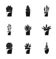 home cactus plant icon set simple style vector image