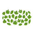 leaves set nature environment ecology vector image vector image