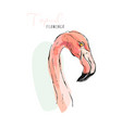 pink flamingo watercolor splashes colorful paint vector image vector image