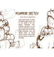 pumpkin drawing set vector image
