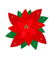Red Christmas Poinsettia Flower vector image