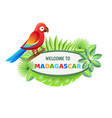 welcome to madagascar poster vector image vector image