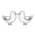 cute doves in love vector image vector image