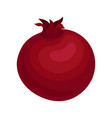 flat icon of red ripe pomegranate vector image vector image
