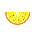 lemon and orange slice hand draw vector image vector image