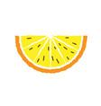 lemon and orange slice hand draw vector image