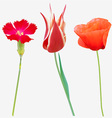 Red Flower Icon Set vector image