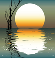 night landscapes vector image