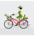 Bike vegetable vector image vector image