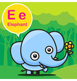 E Elephant color cartoon and alphabet for children vector image