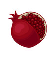 flat icon of ripe pomegranate with cut vector image vector image