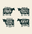 food vintage label set cow bull beef milk vector image vector image