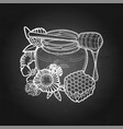 graphic honey bottle and dripper decorated vector image vector image