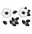 hand drawn roses flowers silhouette set vector image vector image