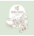 Herbs and Spices Banner vector image