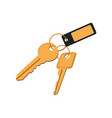 keys in keyring with label vector image vector image