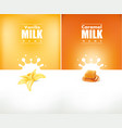 milky splash with vanilla flower and caramel vector image vector image
